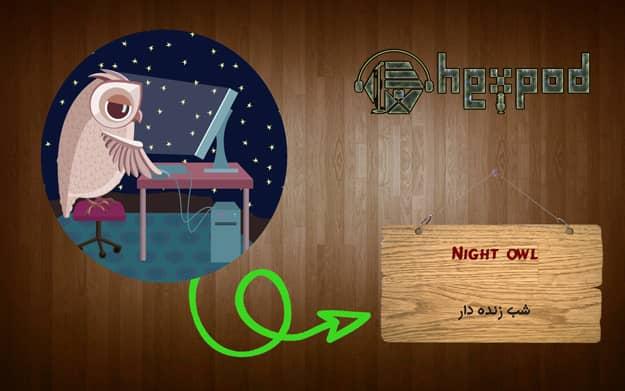 اصطلاح زبان انگلیسی - سطح مبتدی - Idioms - Night owl