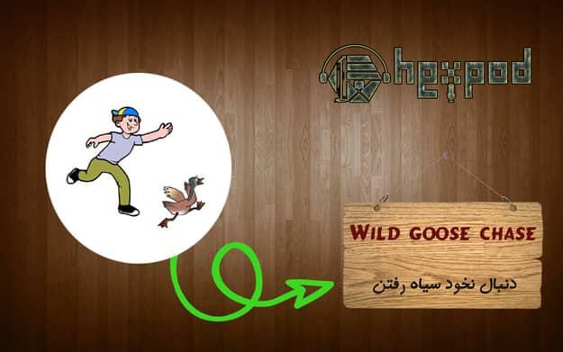 اصطلاح زبان انگلیسی - سطح پیشرفته - Idioms - Wild goose chase