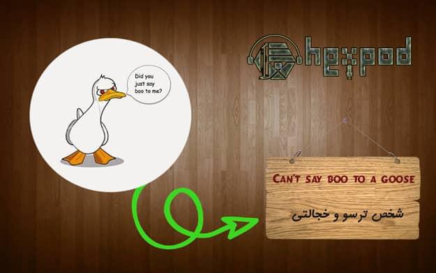 اصطلاح زبان انگلیسی - سطح پیشرفته- Idioms - Cant say boo to a goose
