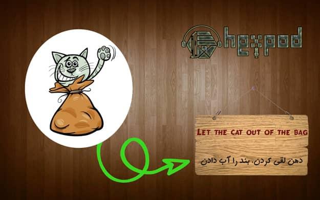 اصطلاح زبان انگلیسی - سطح پیشرفته- Idioms - Let the cat out of the bag