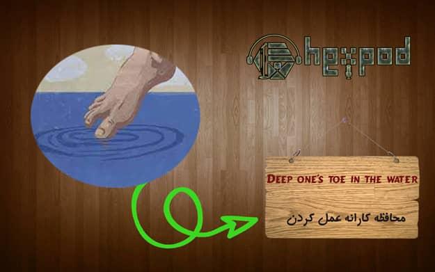 اصطلاح زبان انگلیسی - سطح پشرفته - Idioms - Deep one's toe in water