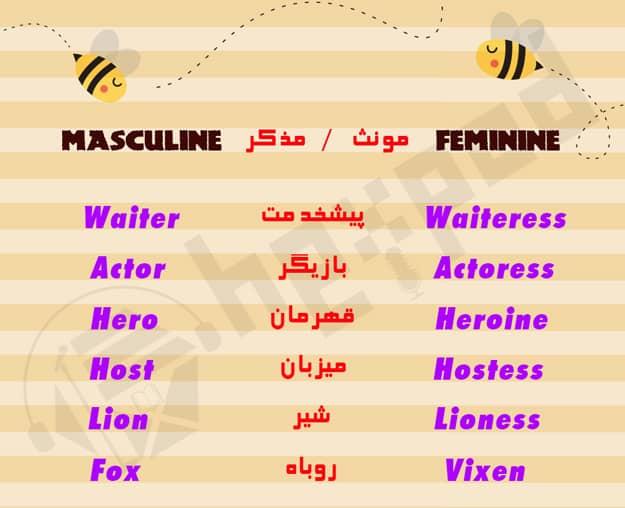 بررسی جنسیت اسم ها - Gender of nouns