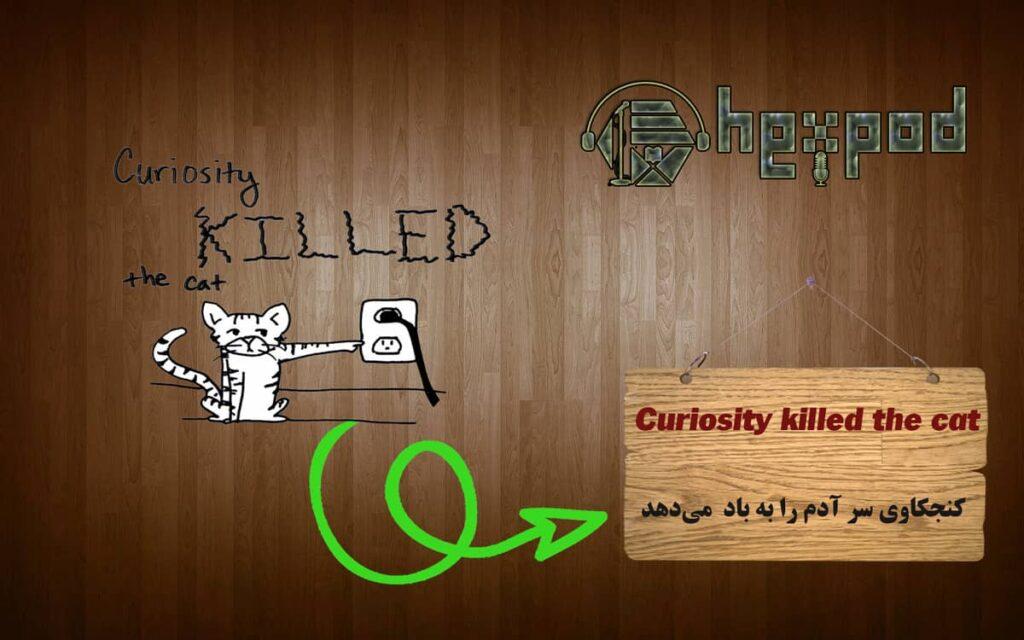 اصطلاح زبان انگلیسی - Idioms - Curiositykilled the cat